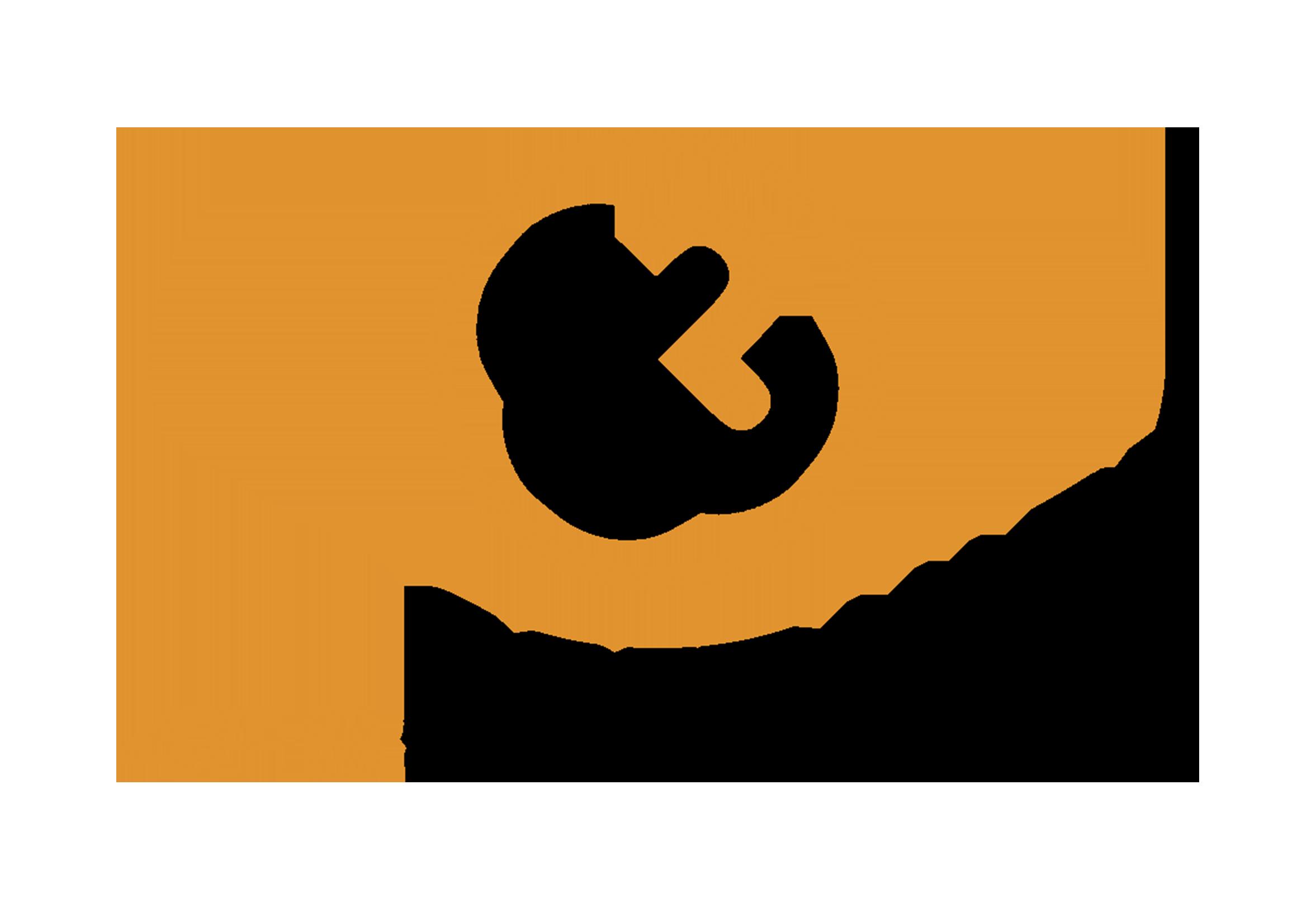4PS software logo